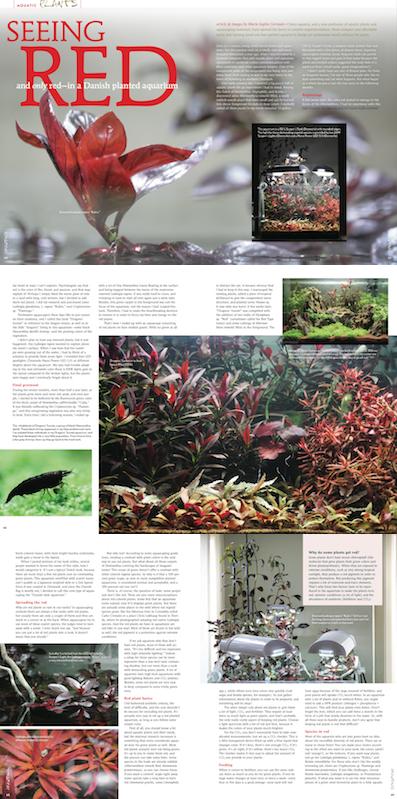 article red plants Amazonas Marie-Sophie Germain