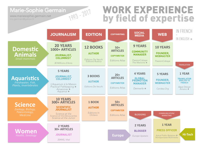 Work Experience Fields Expertise