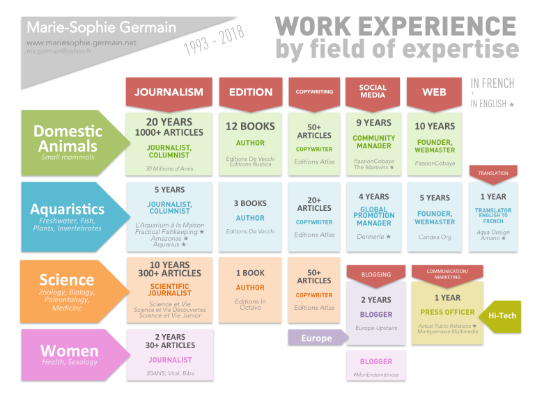 Work Experience Fields Expertise ENG 2018